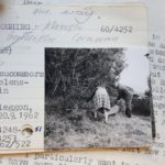 A piece of paper with a photo of two people in a field on it and some printed and handwritten text next to it. Behind the paper is another piece of paper with printed text on it.