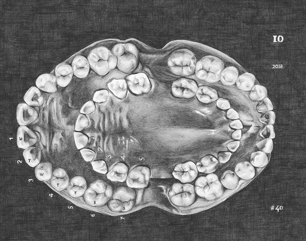 Drawing of teeth featured in the Maya Attoun exhibition at the Jewish Museum London