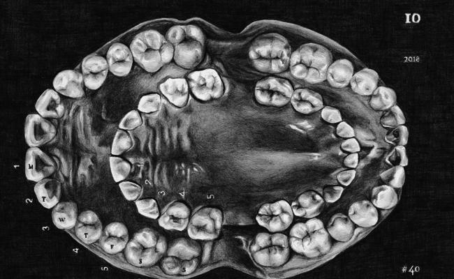 Set of open teeth drawn in pencil