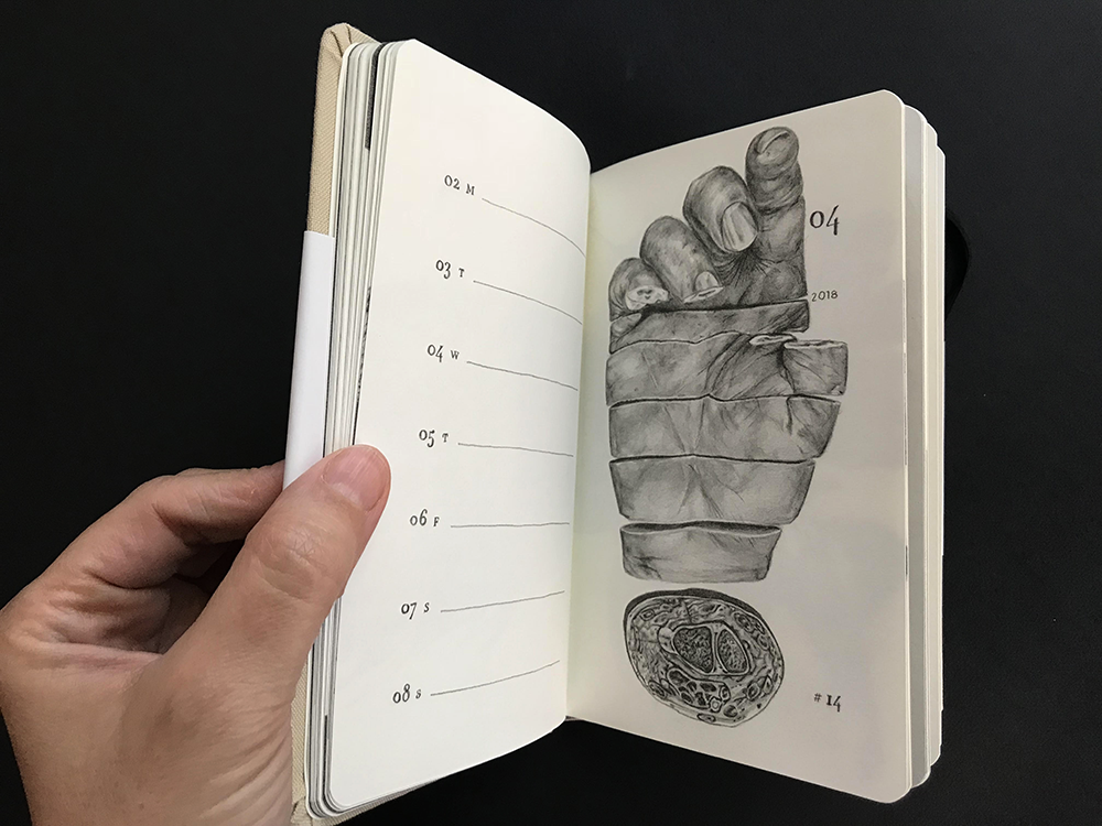 Hand opening pages of a sketch book onto image of sliced hand pencil drawing