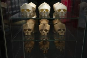 A glass case with wooden skulls inside